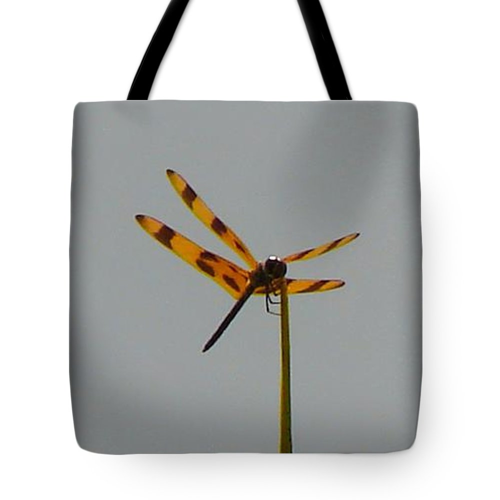 Dragonfly Tote Bag featuring the photograph Dragonfly by Carl Moore