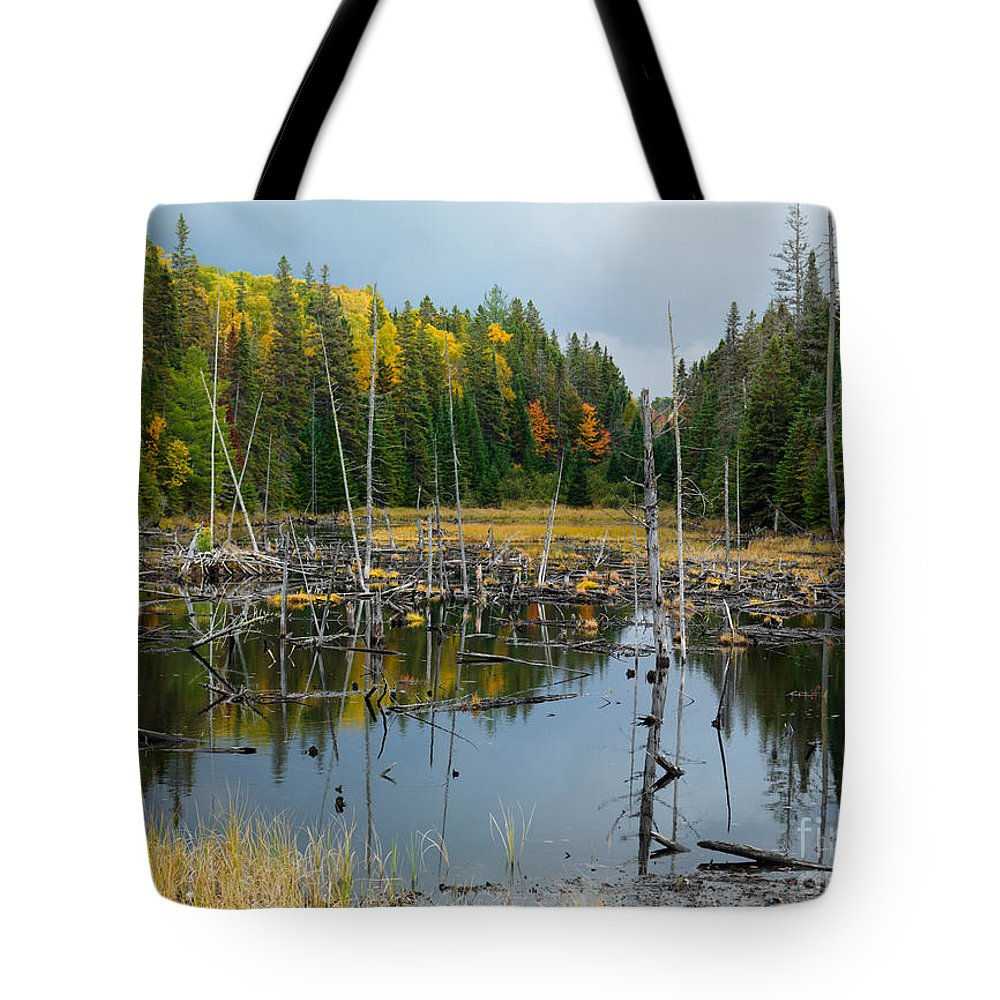 Drowned Trees Tote Bag featuring the photograph Drowned Trees by Oleksiy Maksymenko
