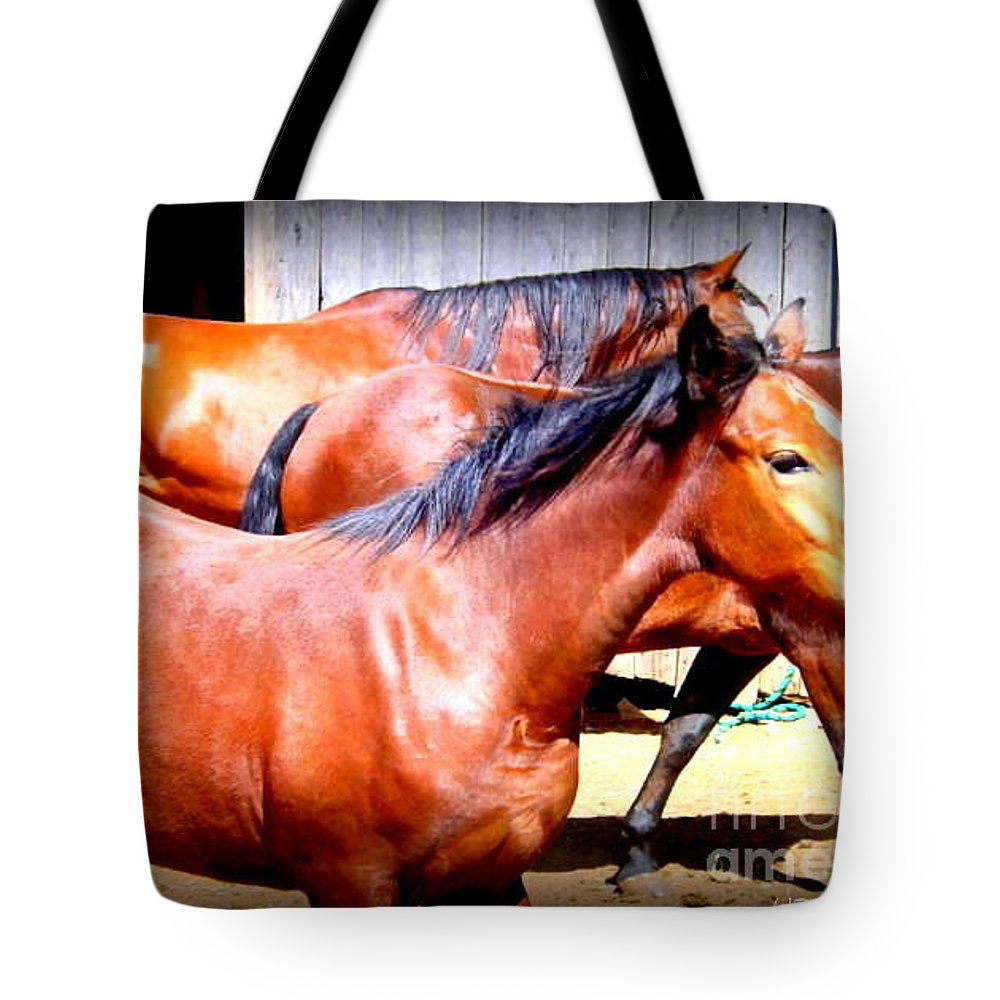 Horses Tote Bag featuring the photograph Eclipse by Rabiah Seminole