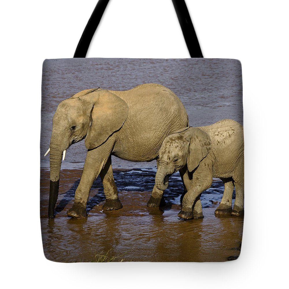 Africa Tote Bag featuring the photograph Elephant Crossing by Michele Burgess