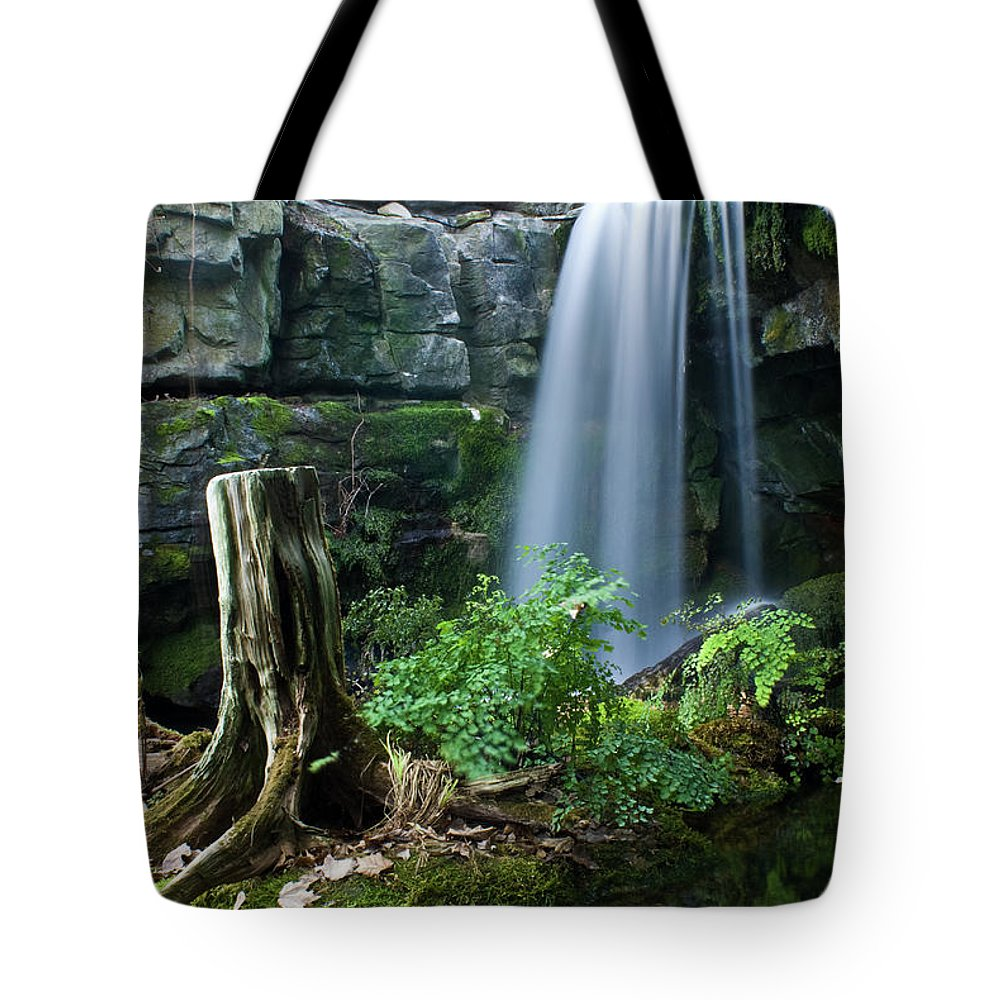 Fairy Tote Bag featuring the photograph Enchanted Waterfall by Douglas Barnett