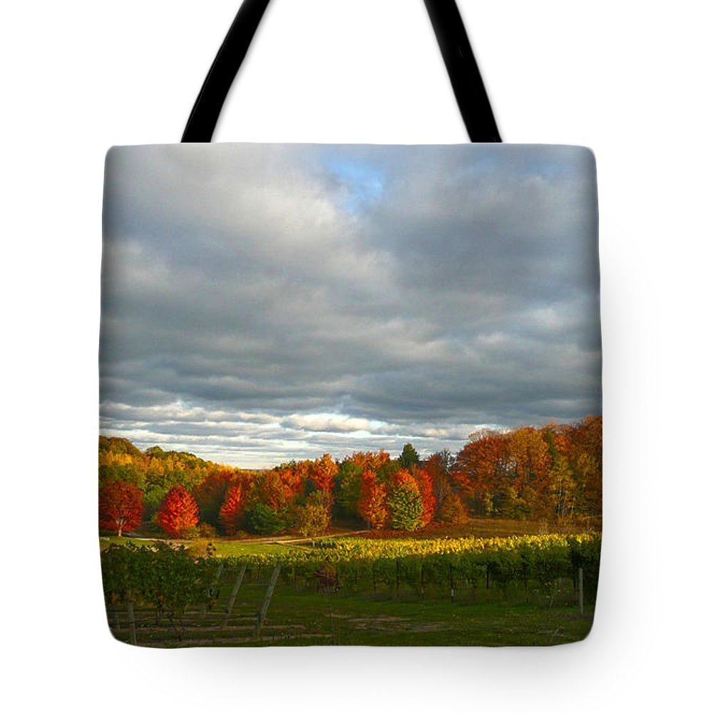 Fall Colors Tote Bag featuring the photograph Fall by Laura Leigh McCall