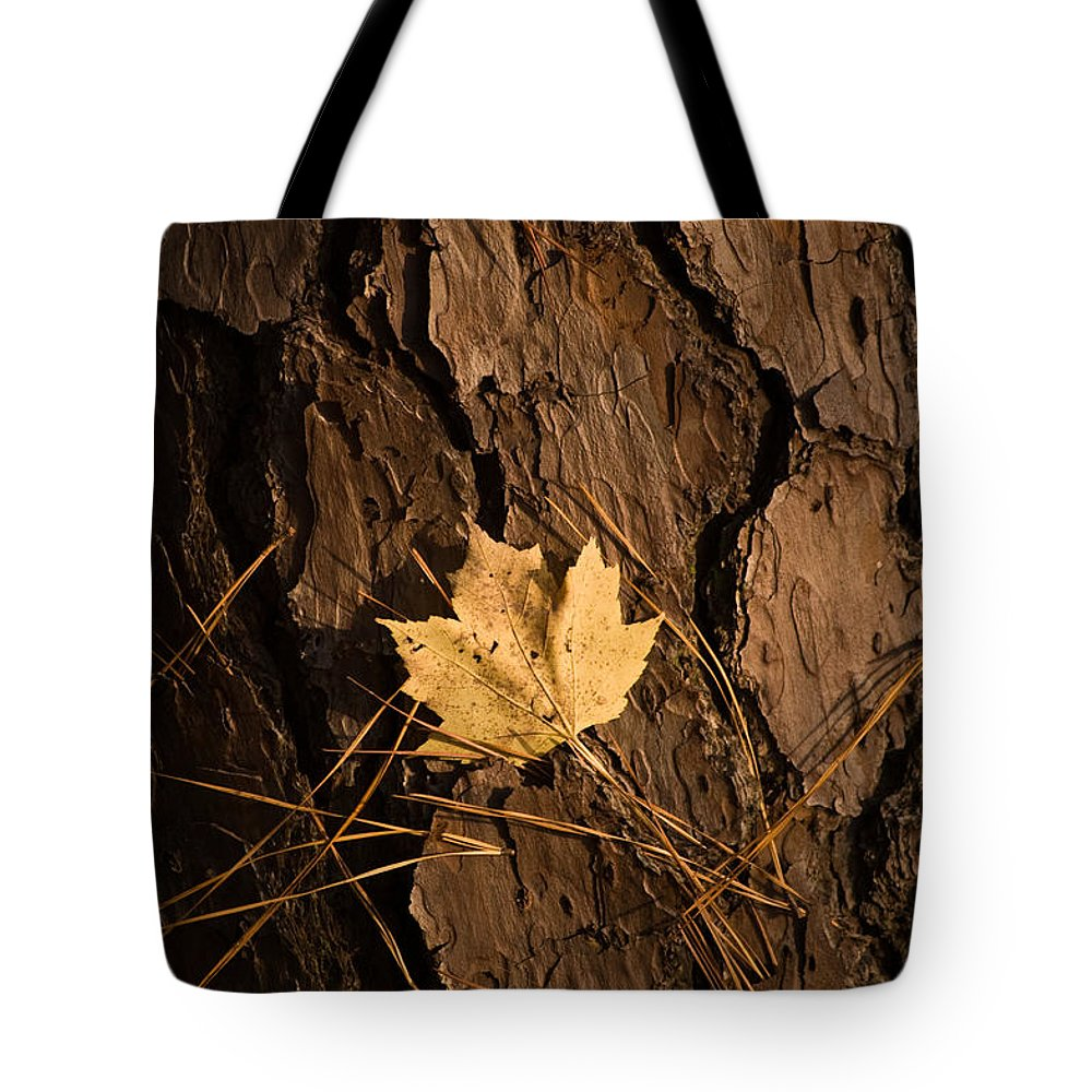 Leaf Tote Bag featuring the photograph Fallen Leaf by Gary Adkins