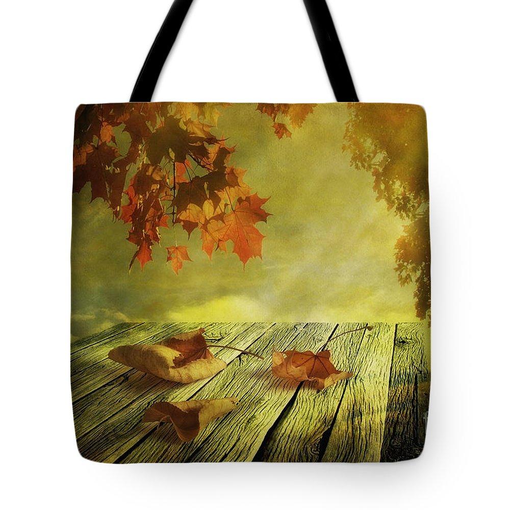 Art Tote Bag featuring the photograph Fallen Leaves by Veikko Suikkanen