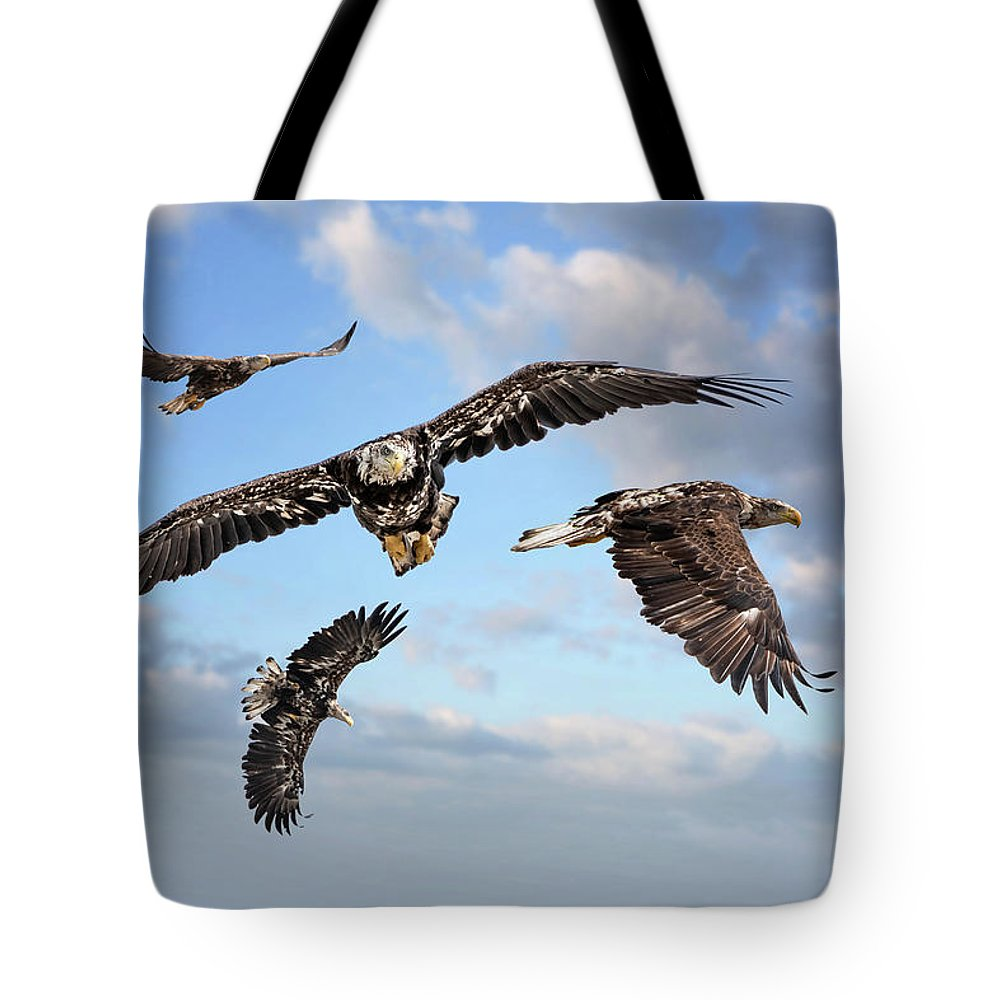 Birds Tote Bag featuring the photograph Flying Eagles by Robert Mullen