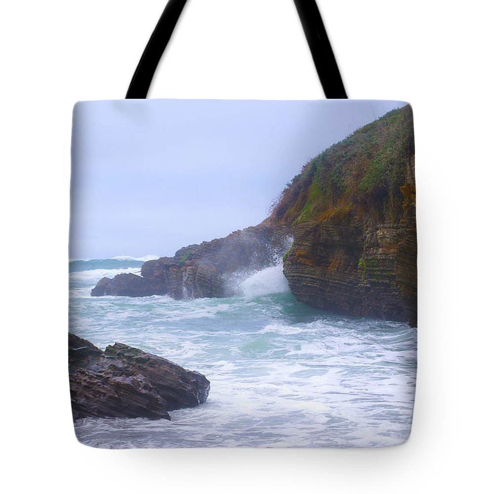 Montana De Oro State Park Tote Bag featuring the photograph Foam In The Fog by Barbara Snyder