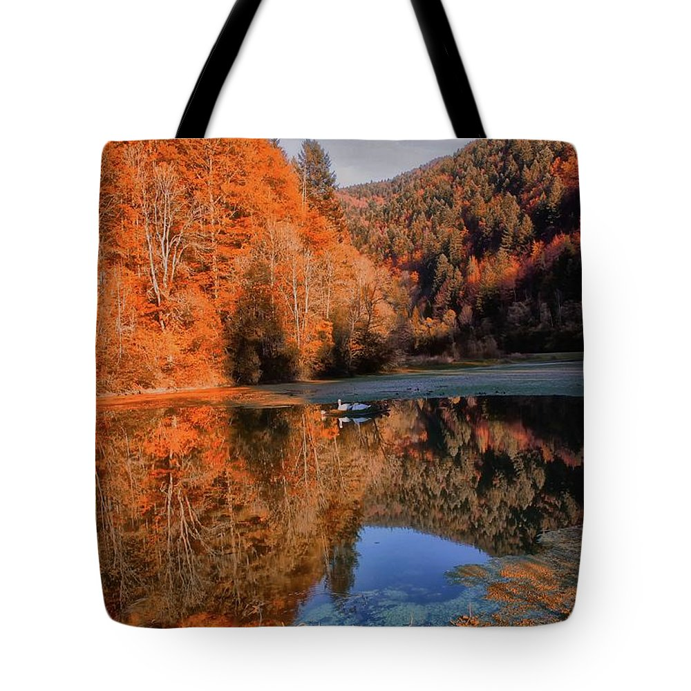 New Tote Bag featuring the photograph Forest by Soares Paulo