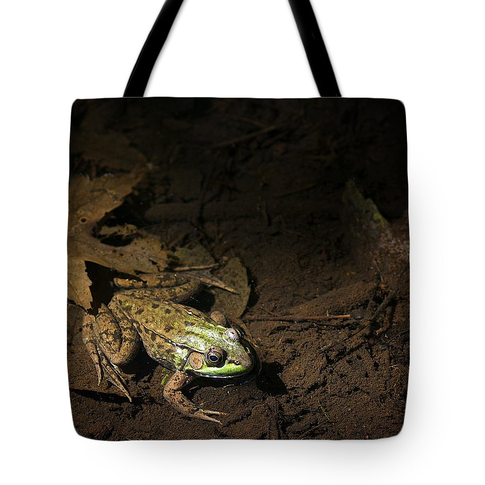 Frog Tote Bag featuring the photograph Frog 4 by Robert Skuja