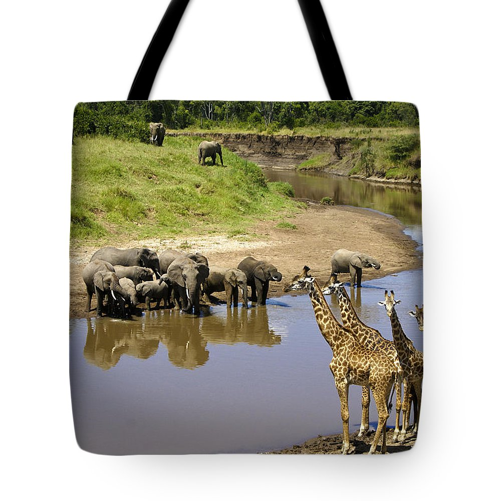 Africa Tote Bag featuring the photograph Garden Of Eden by Michele Burgess