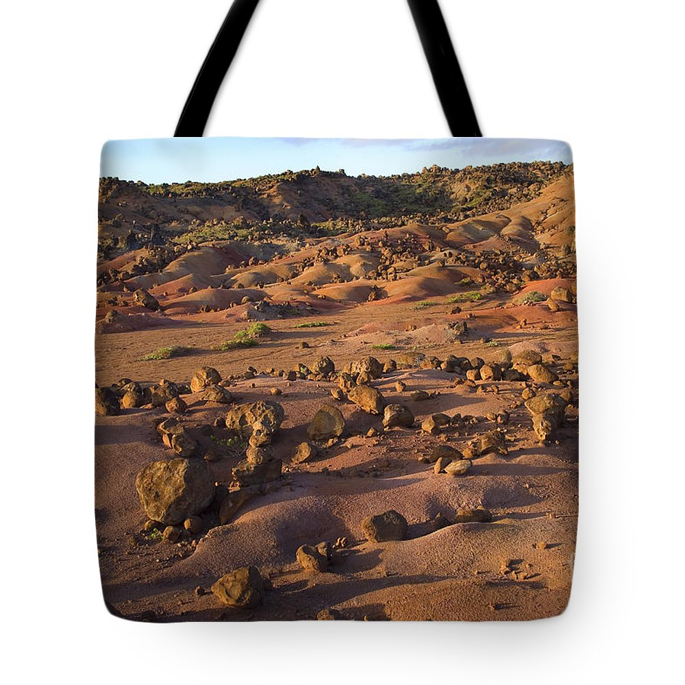 Afternoon Tote Bag featuring the photograph Garden Of The Gods by Ron Dahlquist - Printscapes