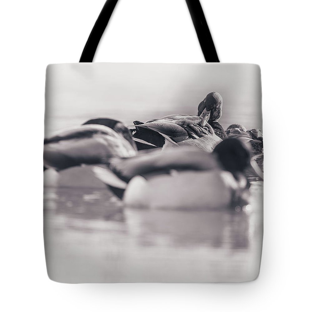 Duck Tote Bag featuring the photograph Getting Ready For The Day by Annette Bush