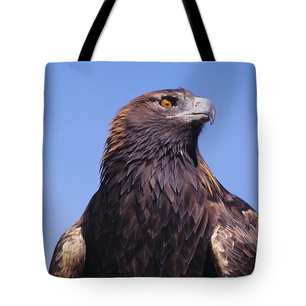 Animal Art Tote Bag featuring the photograph Golden Eagle by John Hyde - Printscapes
