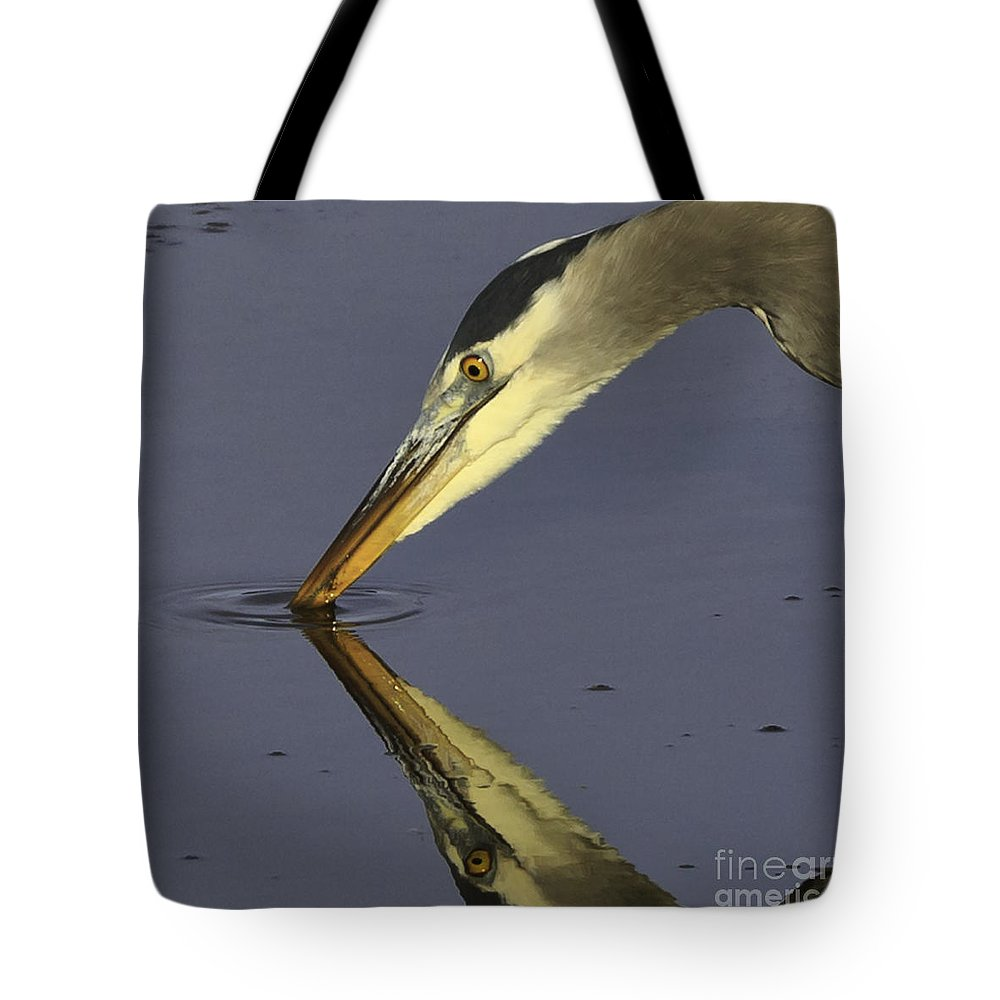 Heron Tote Bag featuring the photograph Great Blue Heron by Tim Hauf