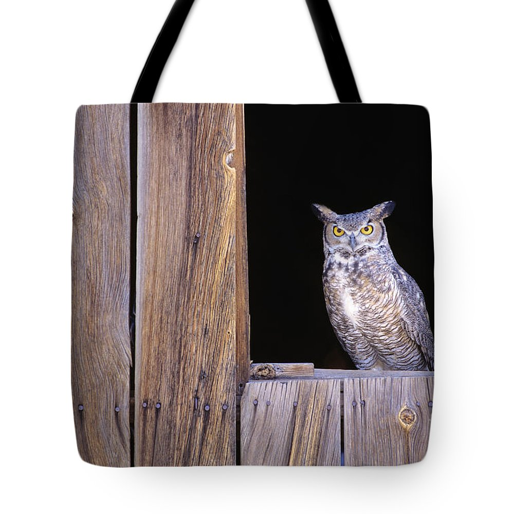 Animal Art Tote Bag featuring the photograph Great Horned Owl by John Hyde - Printscapes