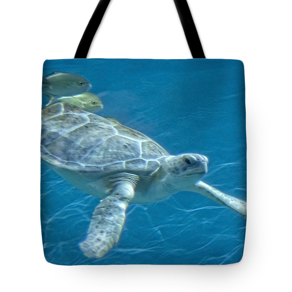 Turtle Tote Bag featuring the photograph Green Sea Turtle by Michael Shake