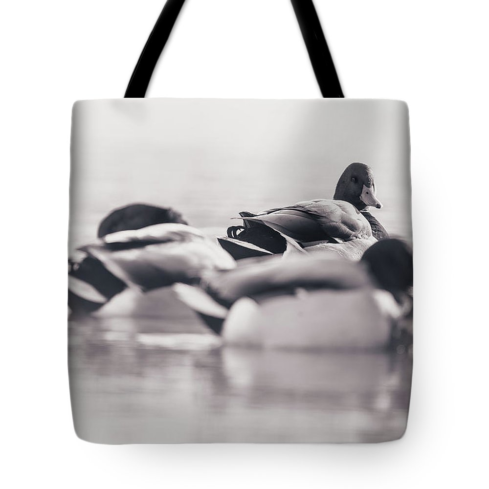 Duck Tote Bag featuring the photograph Group Of Ducks by Annette Bush
