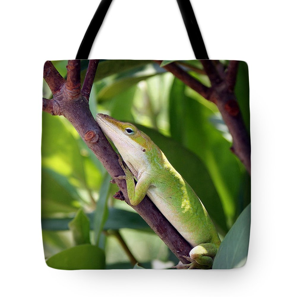 Photography Tote Bag featuring the photograph Hanging On by Shelley Jones
