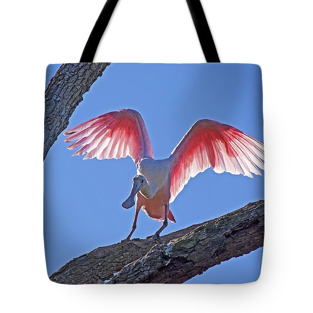 Wildlife Tote Bag featuring the photograph Happy Spoonbill by Kenneth Albin
