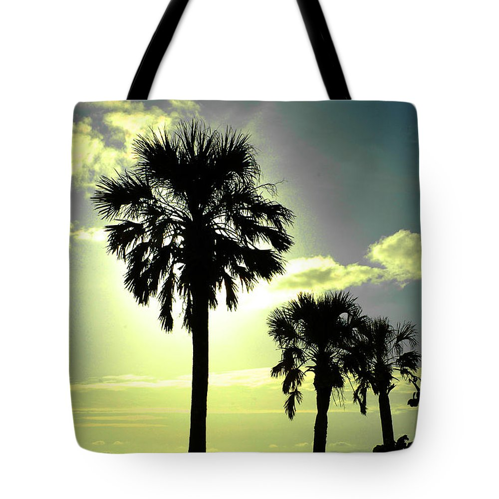Photography Tote Bag featuring the photograph Honeymoon Island Sunset by Susanne Van Hulst