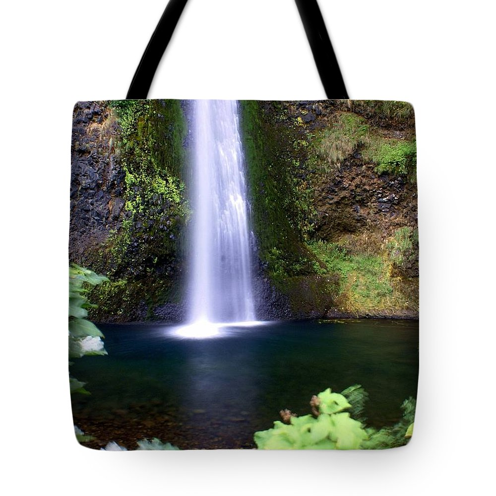 Waterfall Tote Bag featuring the photograph Horsetail Falls by Marty Koch