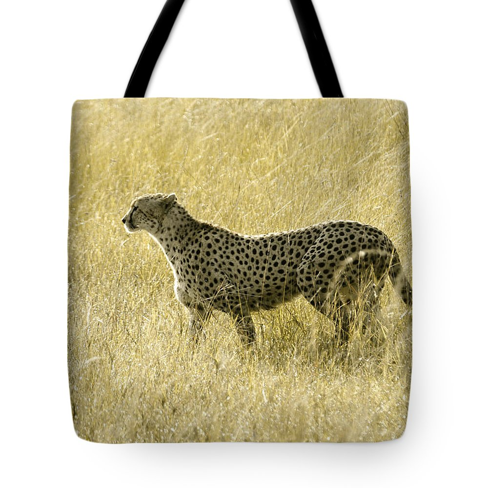 Africa Tote Bag featuring the photograph Hunting Cheetah by Michele Burgess