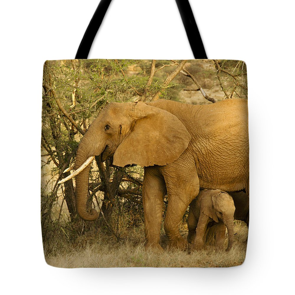 Africa Tote Bag featuring the photograph I Love My Big Mama by Michele Burgess