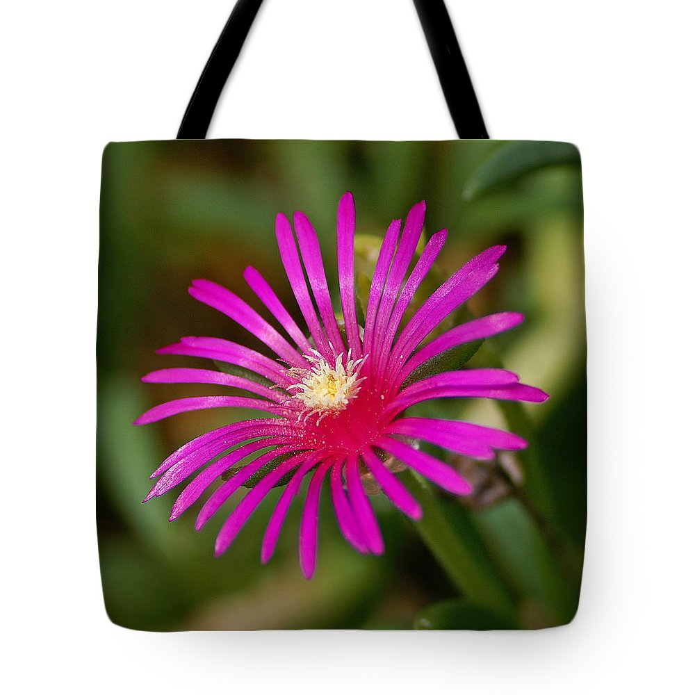 Flower Tote Bag featuring the photograph Ice Flower by Bill Morgenstern