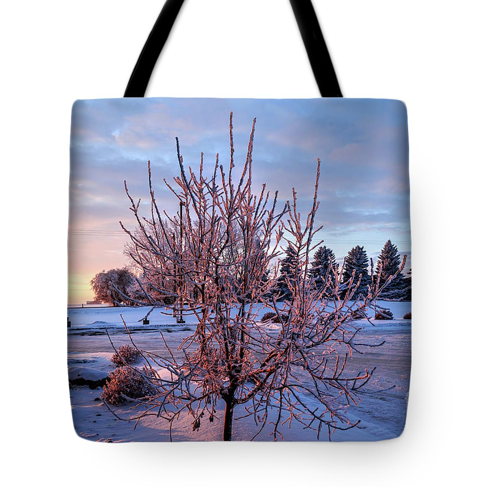 Winter Tote Bag featuring the photograph Icy Tree At Sunset by Viktor Birkus