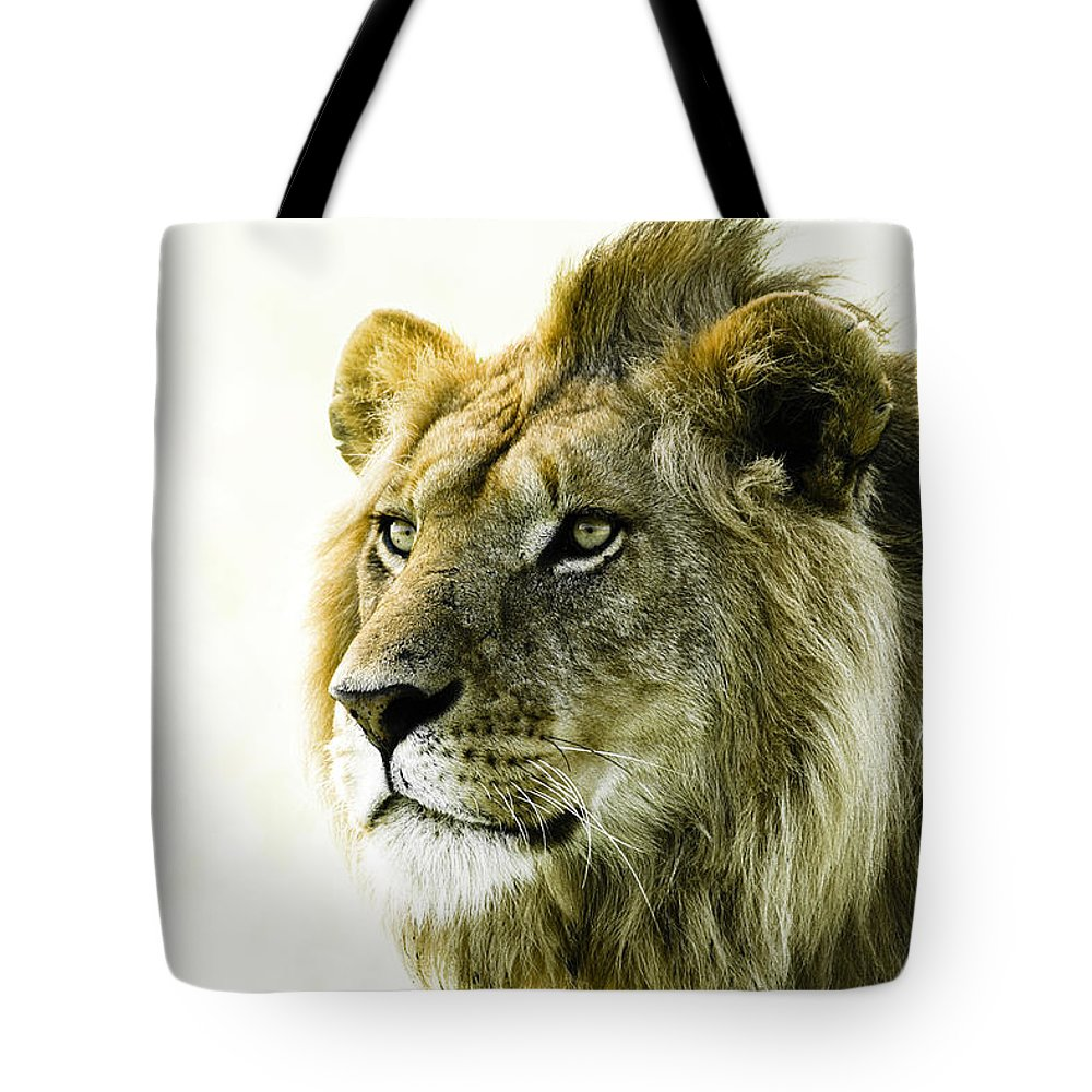 Lion Tote Bag featuring the photograph Intensity by Michele Burgess