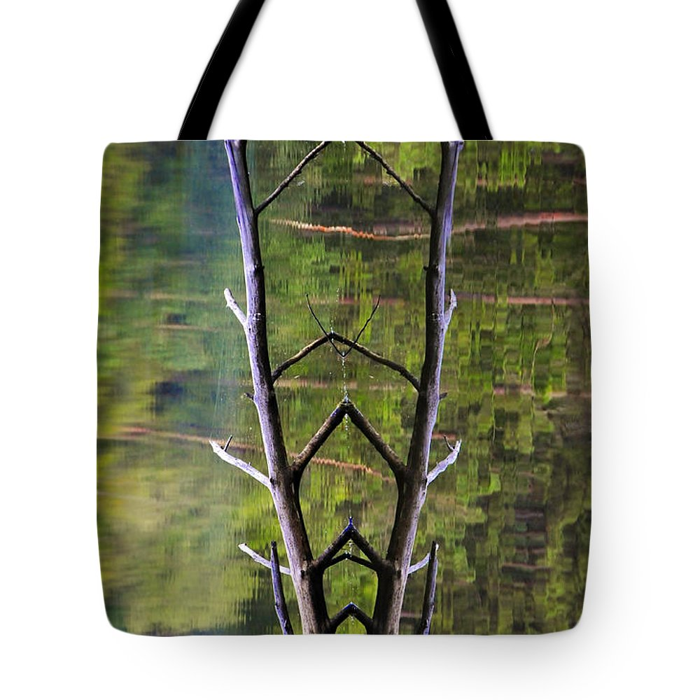 Photography Tote Bag featuring the photograph Jacob's Ladder by Skip Hunt