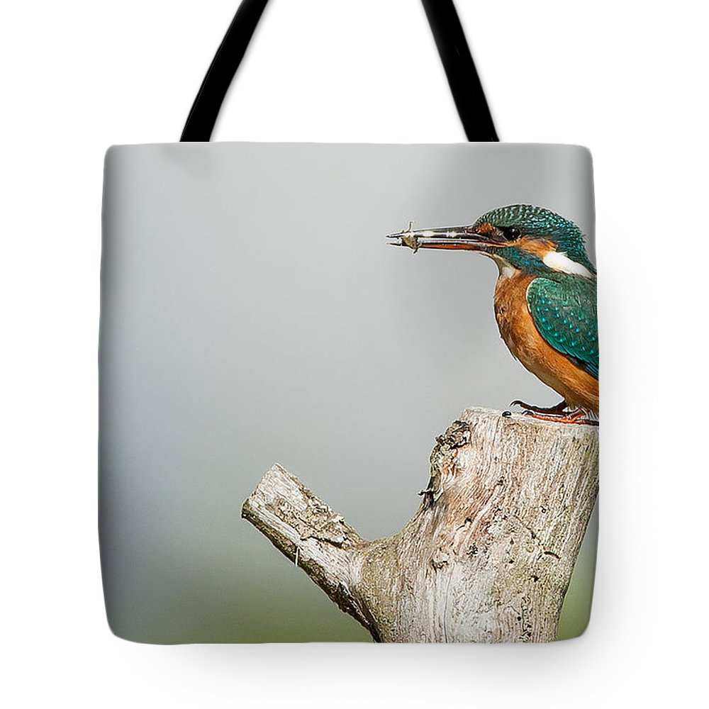 Kingfisher Photographs Tote Bags