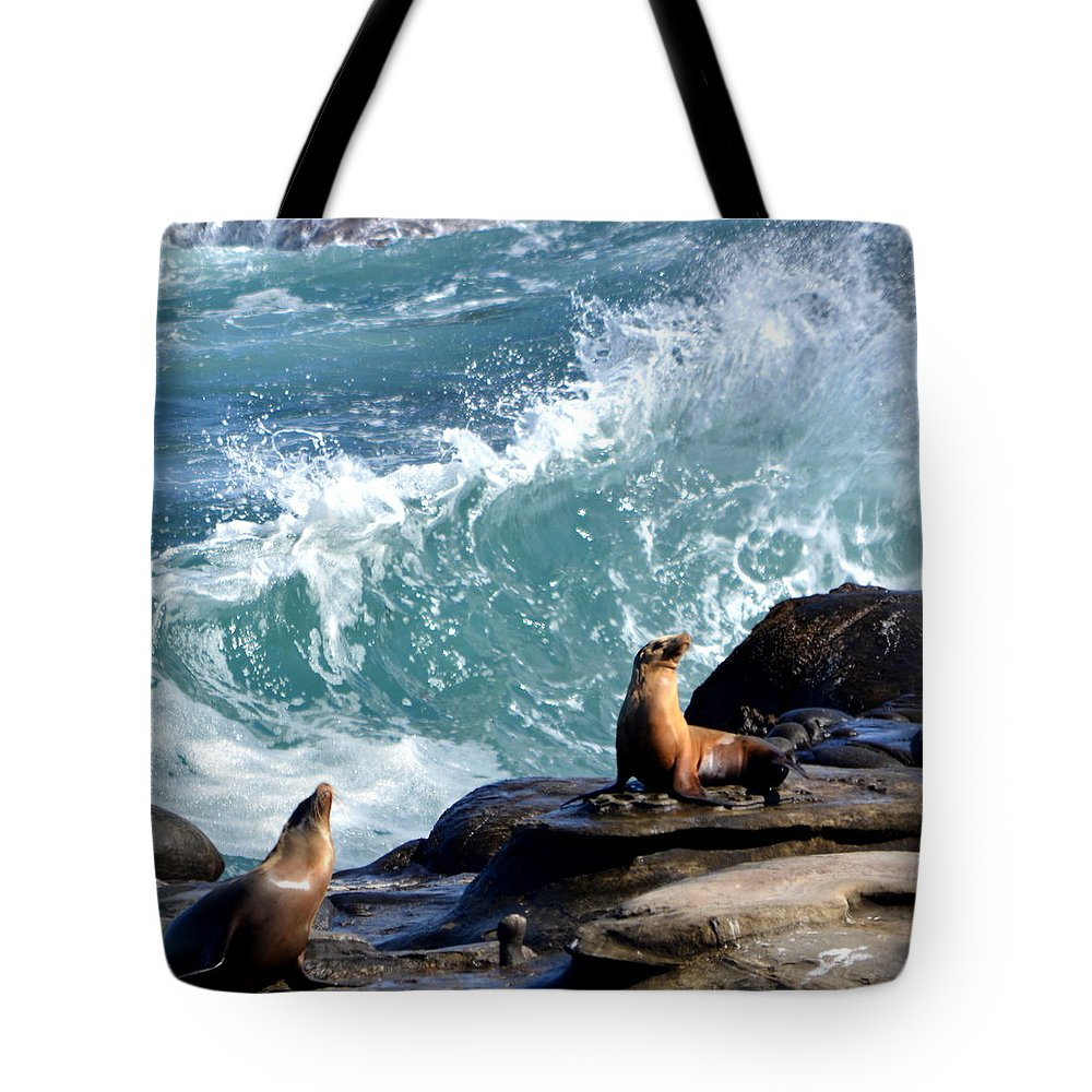 Tote Bag featuring the photograph La Jolla Cove by Dean Ferreira