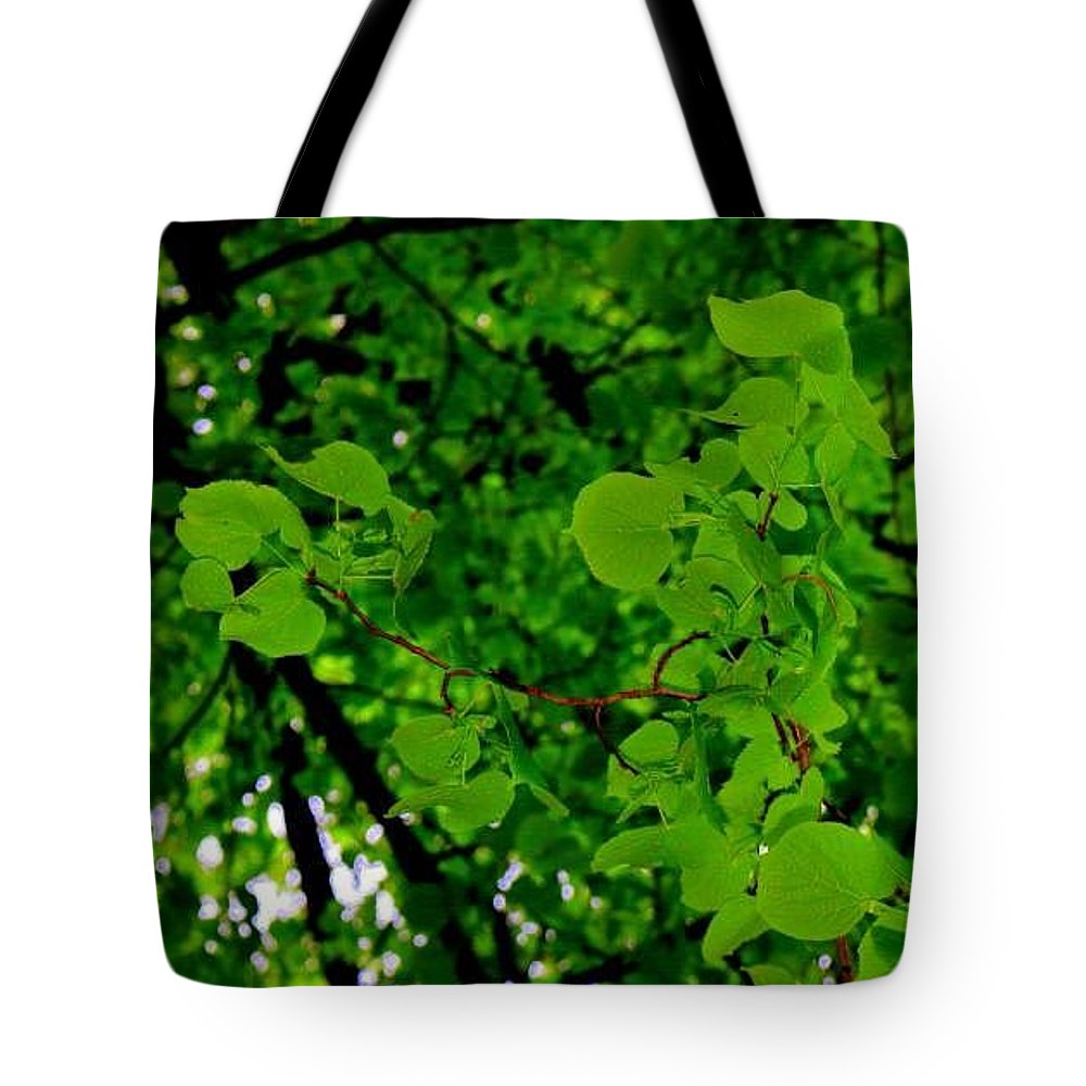 Leaf Tote Bag featuring the photograph Leaves by Bijna Balan