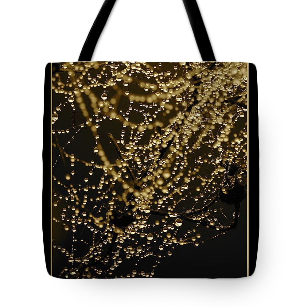 Black And Gold Tote Bag featuring the photograph Let Your Light Shine by Carol Groenen