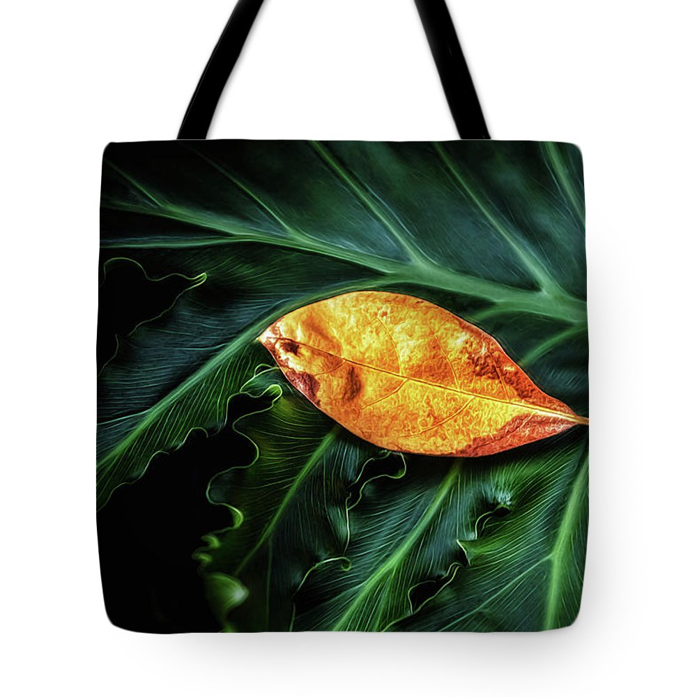 Art Tote Bag featuring the photograph Life Cycle Still Life by Tom Mc Nemar