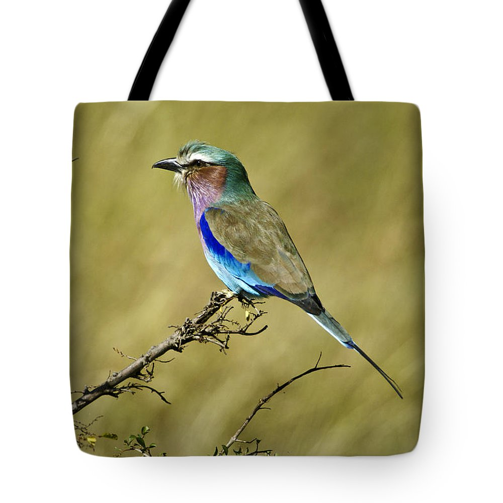 Africa Tote Bag featuring the photograph Lilac-breasted Roller by Michele Burgess