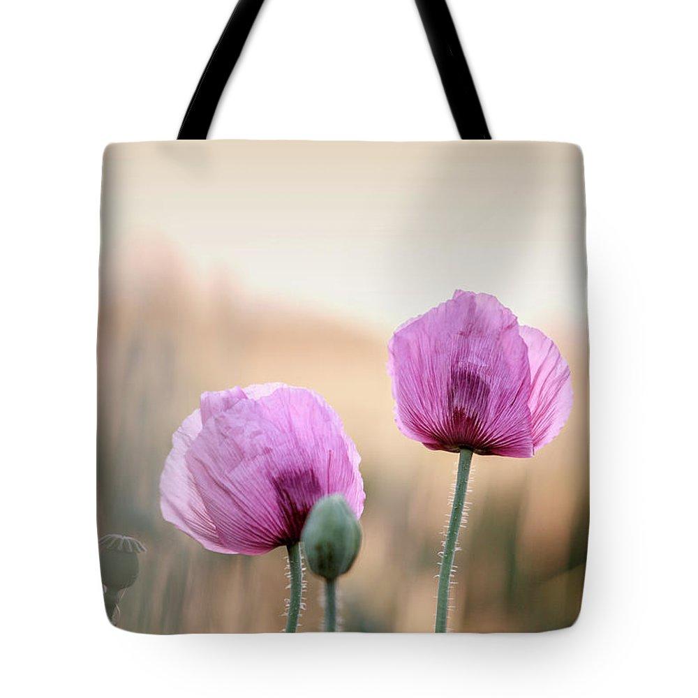Lilac Poppy Flowers Tote Bag For Sale By Nailia Schwarz