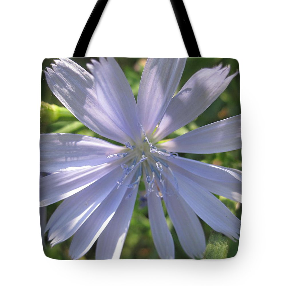 Flowers Tote Bag featuring the photograph Little Star by Rebecca Mento