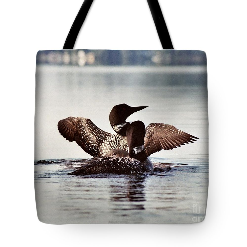 Common Loon Tote Bag featuring the photograph Loon Family by Sandra Huston