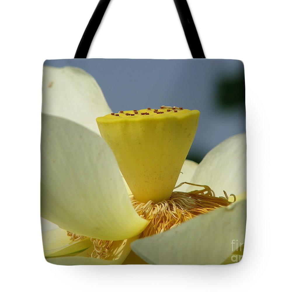 Lotus Tote Bag featuring the photograph Lotus by Amanda Barcon
