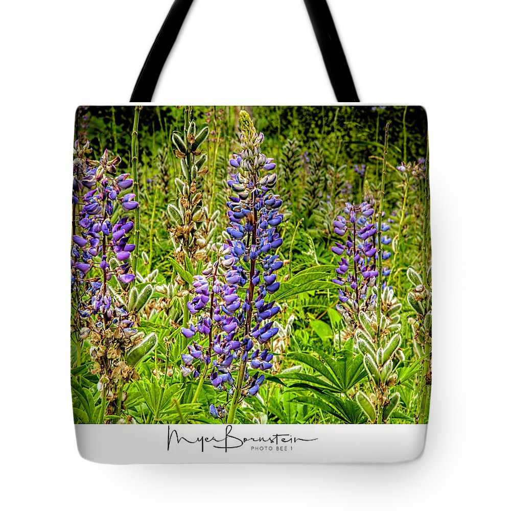 05-location Tote Bag featuring the photograph Lupines by Myer Bornstein