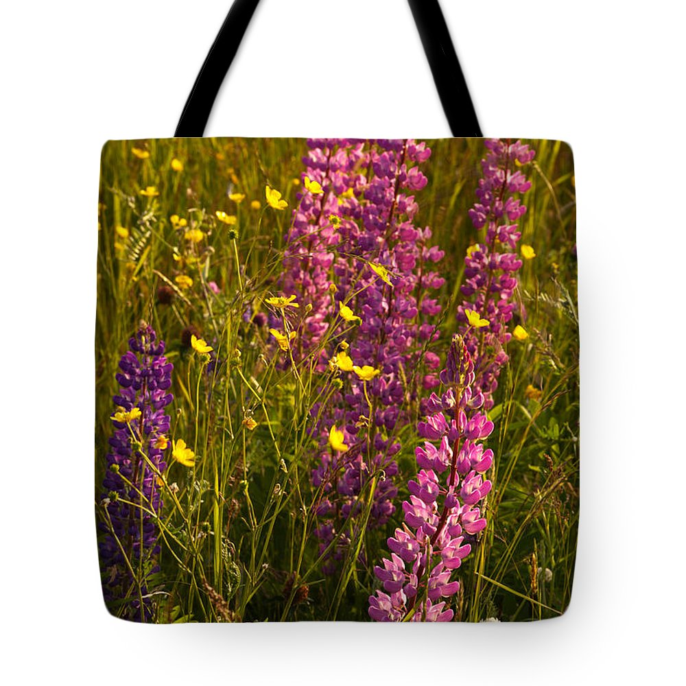 Wildflowers Tote Bag featuring the photograph Lupins And Buttercups by Irwin Barrett