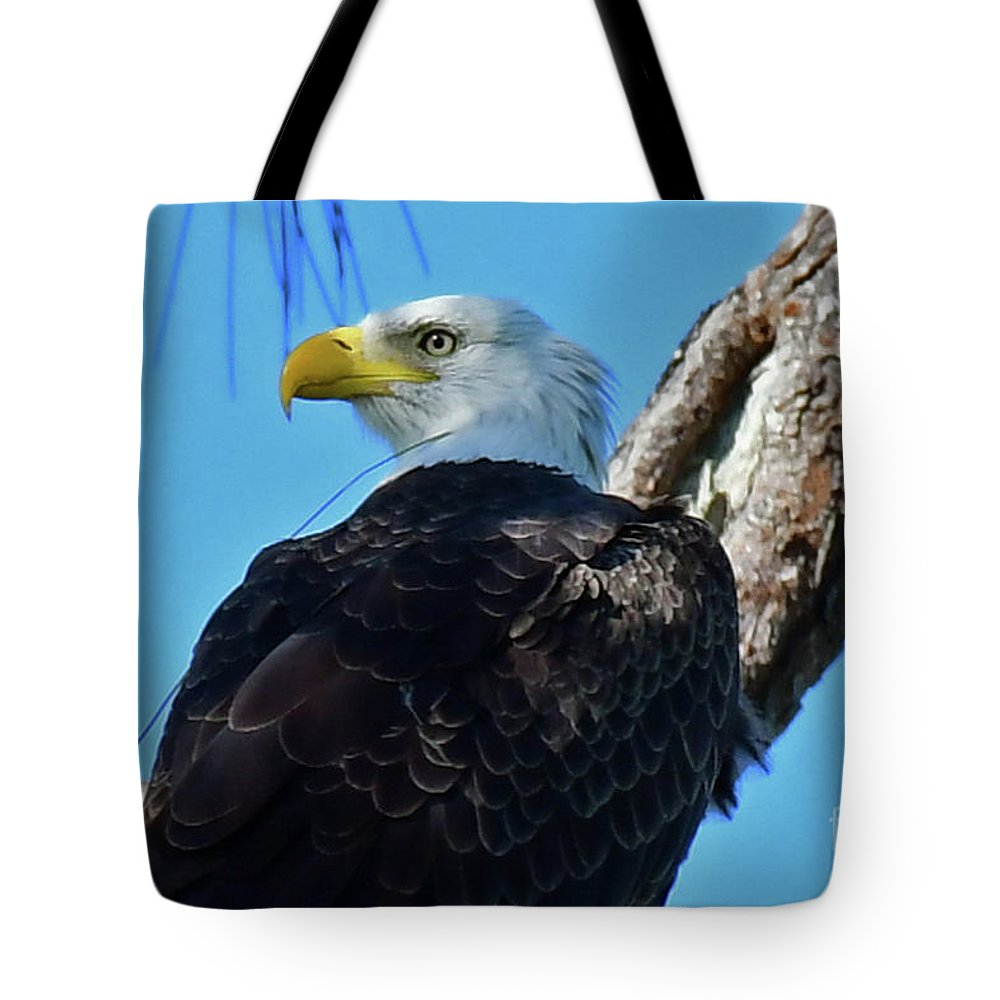 Tote Bag featuring the photograph M15 by Liz Grindstaff