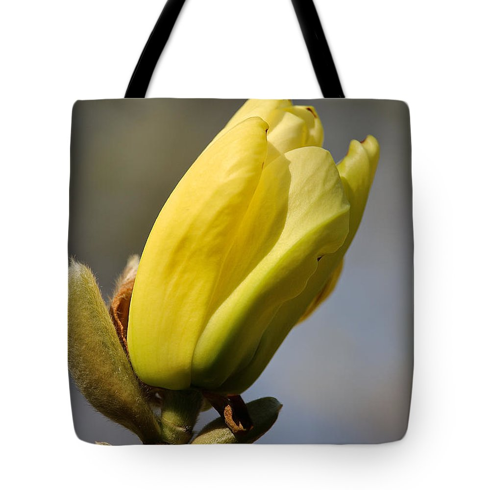 Flower Tote Bag featuring the photograph Magnolia Blossom by Susan Herber