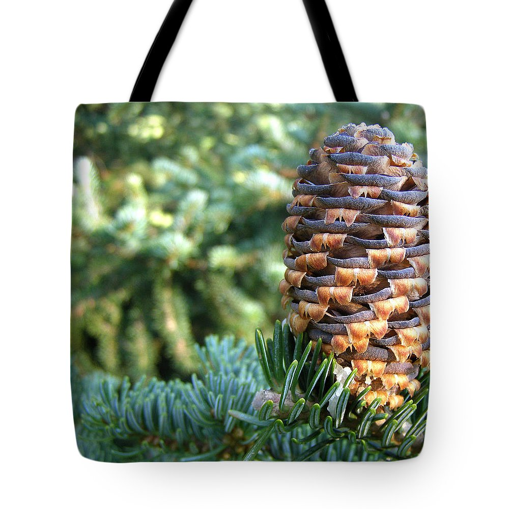 Evergreens Tote Bag featuring the photograph Masterful Construction - Spruce Cone by Angie Rea