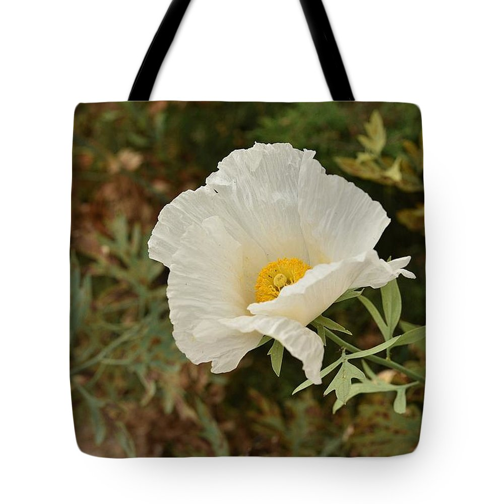 Linda Brody Tote Bag featuring the photograph Matilija Poppy I by Linda Brody