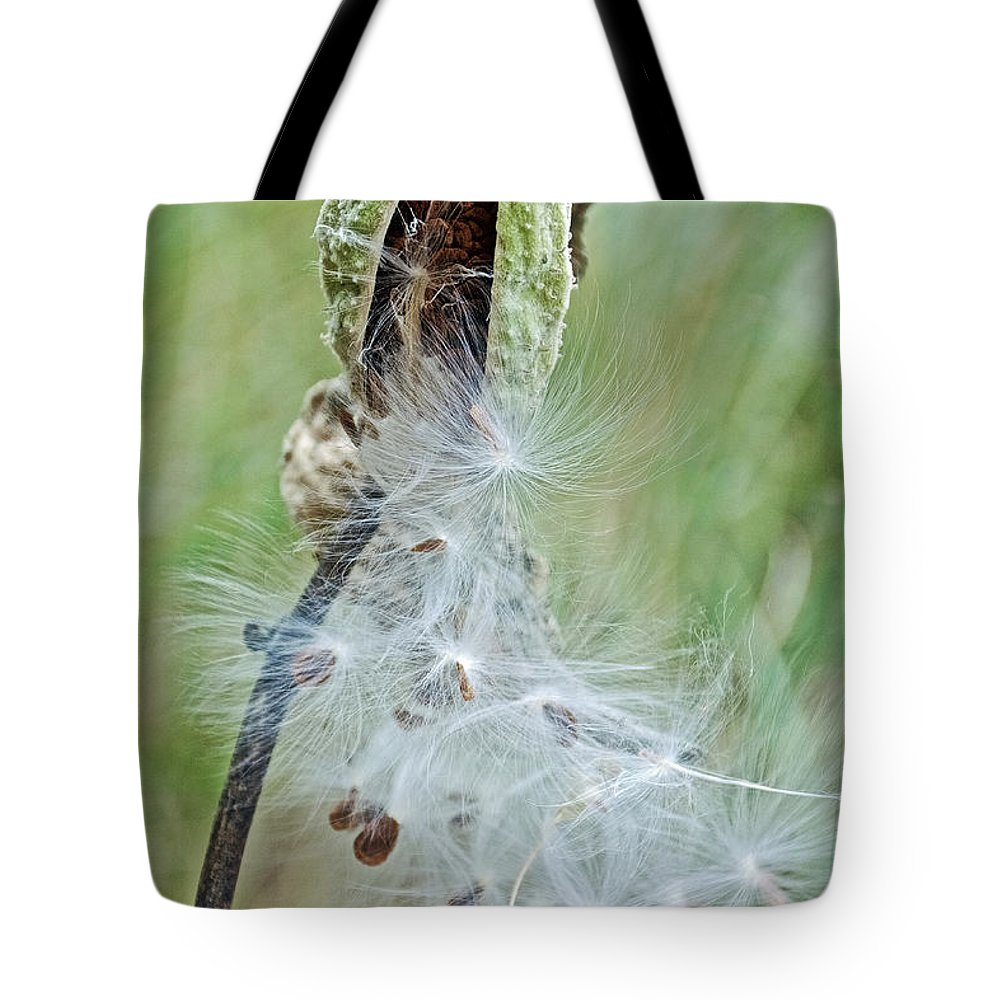 Milkweed Pod On Trail To North Beach Park In Ottawa County Tote Bag featuring the photograph Milkweed Pod On Trail To North Beach Park In Ottawa County, Michigan by Ruth Hager