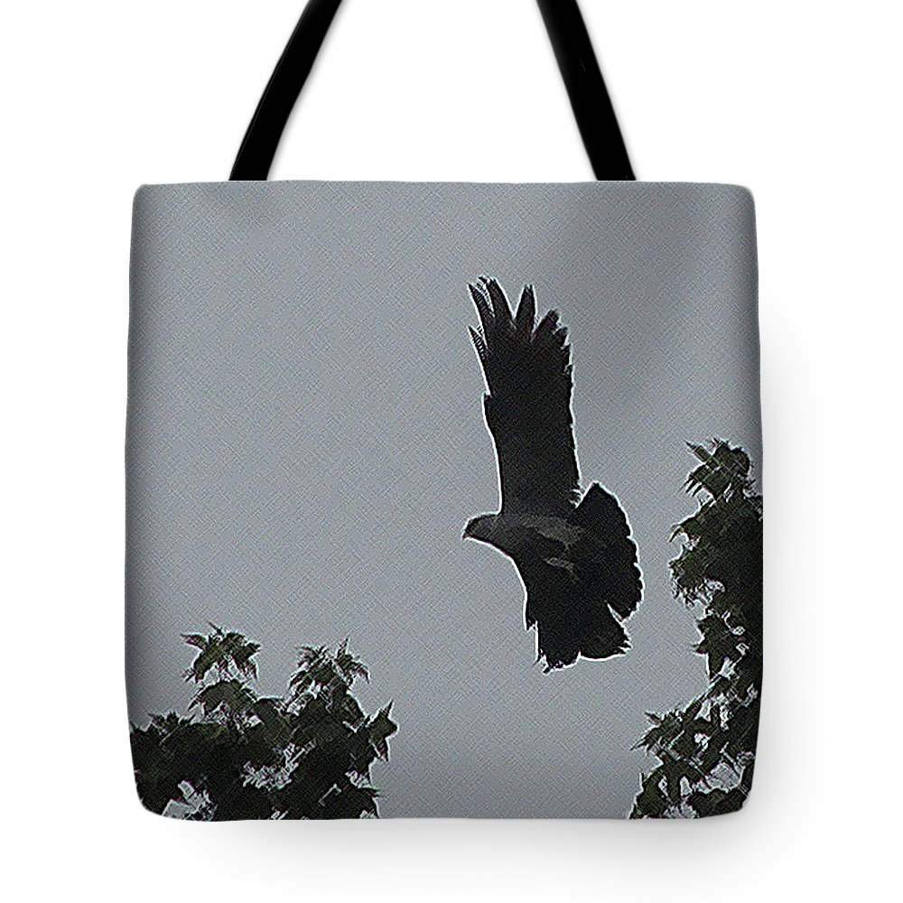 Bird Tote Bag featuring the photograph Mississippi Kite In Flight by Donna Brown