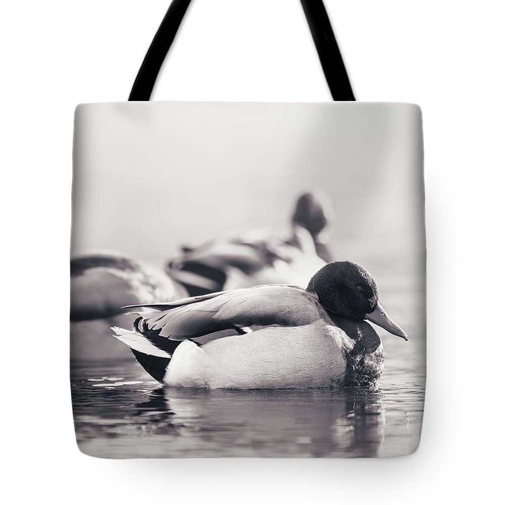 Duck Tote Bag featuring the photograph Morning Nap by Annette Bush