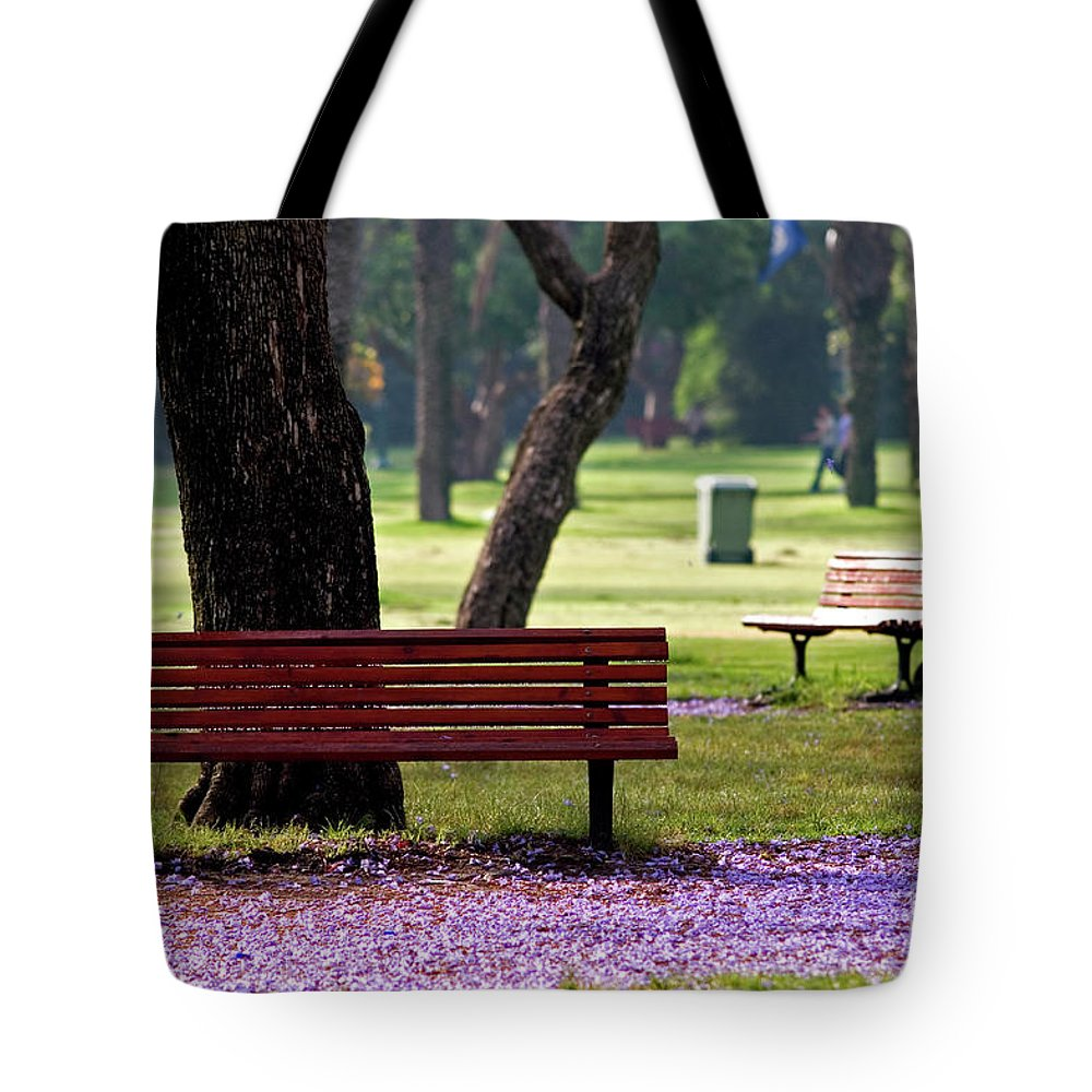 Psi Tote Bag featuring the photograph Morning View by Ofer Zilberstein